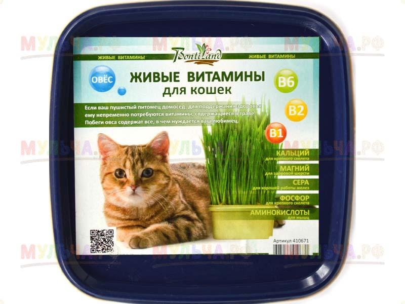 """Живые Витамины для кошек """"Ячмень"""", арт 410688"""